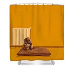 Jonas Shower Curtain