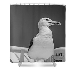 Jonathan Shower Curtain