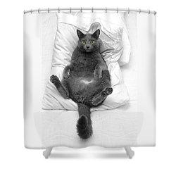 Joseph On A Pillow Shower Curtain