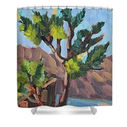 Shower Curtain featuring the painting Joshua At Keys Ranch by Diane McClary
