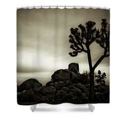 Shower Curtain featuring the photograph Joshua Morning by Tom Vaughan
