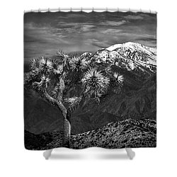 Shower Curtain featuring the photograph Joshua Tree At Keys View In Black And White by Randall Nyhof