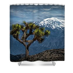 Shower Curtain featuring the photograph Joshua Tree At Keys View In Joshua Park National Park by Randall Nyhof