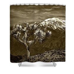 Shower Curtain featuring the photograph Joshua Tree At Keys View In Sepia Tone by Randall Nyhof
