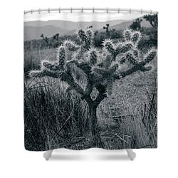 Joshua Tree Cactus Shower Curtain