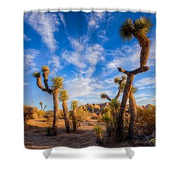 Shower Curtain featuring the photograph Joshua Tree Dawn by Rikk Flohr