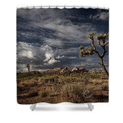 Joshua Tree Fantasy Shower Curtain