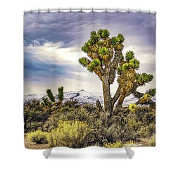 Joshua Tree On The Extraterrestrial Highway Shower Curtain by Janis Knight