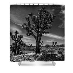 Joshua Trees Series 9190678 Shower Curtain
