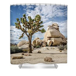 Joshua Tree No.2 Shower Curtain
