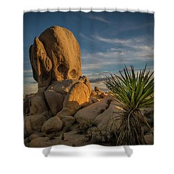 Joshua Tree Rock Formation Shower Curtain