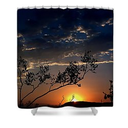 Joshua Tree Sunset Shower Curtain