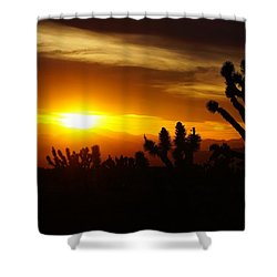 Joshua Tree Sunset In Nevada Shower Curtain