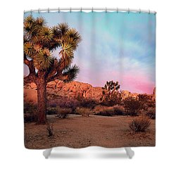 Joshua Tree With Dawn's Early Light Shower Curtain