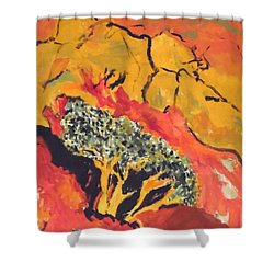 Joshua Trees In The Negev Shower Curtain
