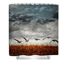 Journey 5 Shower Curtain