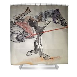 Jousting And Falcony Album  Shower Curtain