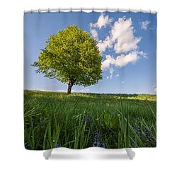 Shower Curtain featuring the photograph Joy by Davorin Mance