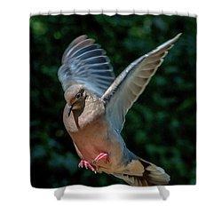 Joy Of Flight Shower Curtain