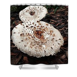 Shower Curtain featuring the photograph Joy Walking In The Woods by Mr Photojimsf