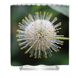 Joyful Burst Shower Curtain