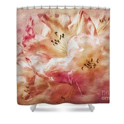 Jubilee Blush Shower Curtain