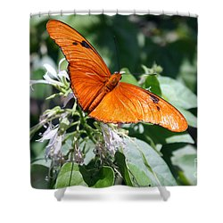 Julia Butterfly Shower Curtain
