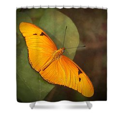 Julia Dryas Butterfly-2 Shower Curtain