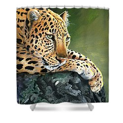 Shower Curtain featuring the painting Jumanji by Sherry Shipley