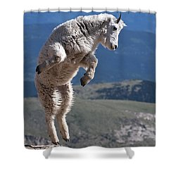 Shower Curtain featuring the photograph Jump by Gary Lengyel