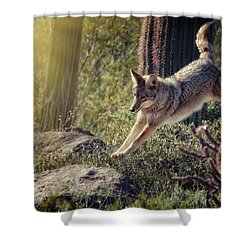 Jumping Rocks Shower Curtain by Elaine Malott