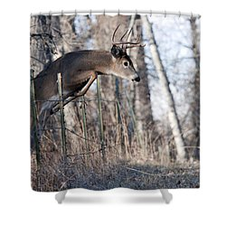 Jumping White-tail Buck Shower Curtain