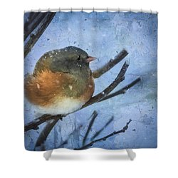Junco On Winter Day Shower Curtain