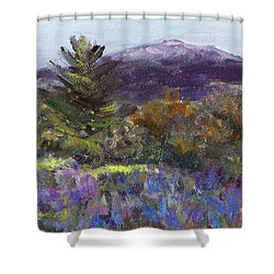 June Carpet Shower Curtain by Alicia Drakiotes