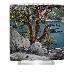 June Lake Juniper Shower Curtain