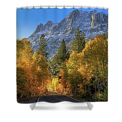 June Lake Loop Shower Curtain by Donna Kennedy