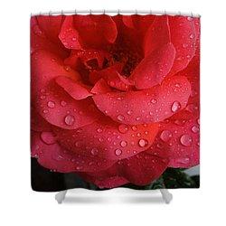 June  Rose  Shower Curtain