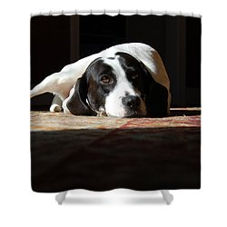 Junebug Shower Curtain by Robert Meanor