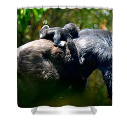 Jungle Baby Hitch Hiker Shower Curtain
