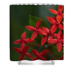Jungle Geranium Shower Curtain
