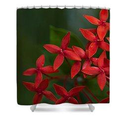 Jungle Geranium Shower Curtain by Marlo Horne
