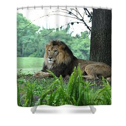 Shower Curtain featuring the photograph Jungle King by John Black