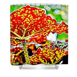 Shower Curtain featuring the photograph Jungle Leaf by Mindy Newman