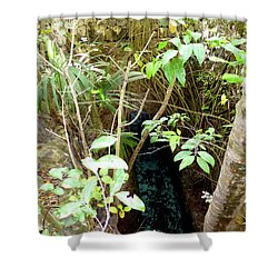 Shower Curtain featuring the photograph Jungle Stream by Francesca Mackenney