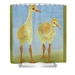 Junior Birdmen Shower Curtain by Judy Mercer
