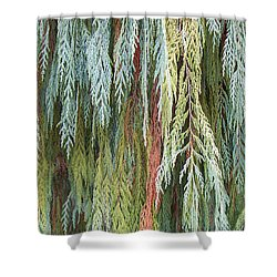Shower Curtain featuring the photograph Juniper Leaves - Shades Of Green by Ben and Raisa Gertsberg