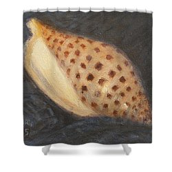 Junonia Shower Curtain by Donelli  DiMaria