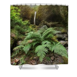 Jurassic Forest Shower Curtain by David Gn