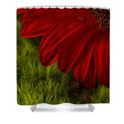 Just A Drop Shower Curtain by Marlo Horne