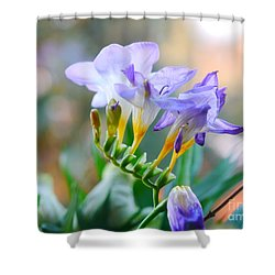 Shower Curtain featuring the photograph Just A Freesia by Lance Sheridan-Peel